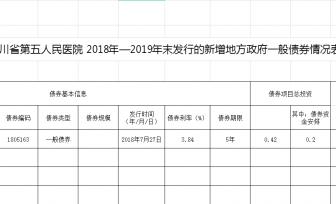 2018-2019年地方政府债券 执行进度情况与运营情况说明
